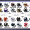 2014 NFL Preview and Predictions