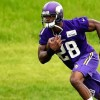 Minnesota Vikings Restructure Adrian Peterson's Contract