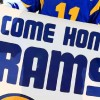 Rams Approved to Move to L.A.; Chargers Next?