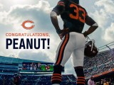 Charles Tillman Retires With the 'Peanut Punch'